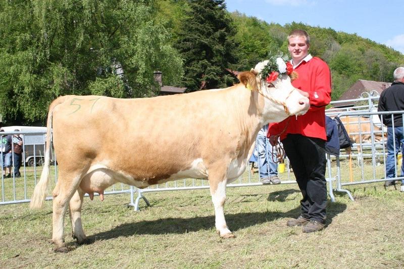 Mit 3,74 % Eiweißgehalt wurde diese Humflo-Tochter Fichtel von Siegfried Wasmer aus Bernau Eiweißkönigin. Felix Schätzle aus Todtnau- Präg führt sie vor.